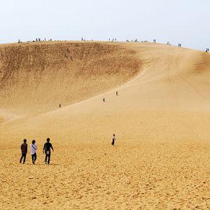 海がすぐそこにあるようでバリ遠い。そんな鳥取砂丘