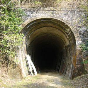 トンネルの多い町に住んでるけど、こんな変わったトンネルは見たことがない!
