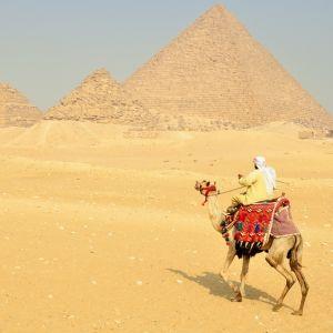 エジプトでの墜落事故のニュース記事にとんでもない広告がww