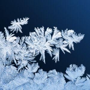 安物冷蔵庫の「霜」を長期間放置した結果wwwwww