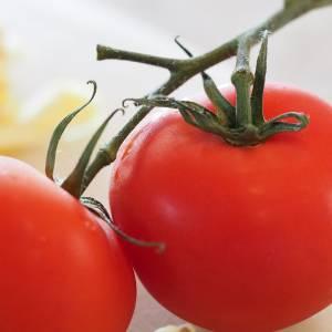 「ブッチャケトマト」ってどんなトマトだよと思ったら…www