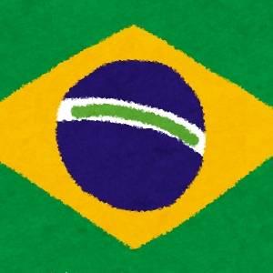 ブラジルのリスさーん!!!!!