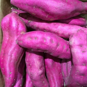 紫芋でシチュー作ったらやばいのできたwwwwwww