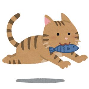 チョコレートではなく魚をもらえて満足な青島の猫さんたち
