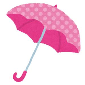 傘が壊れて「ハリポタごっこ」ができるようになったww