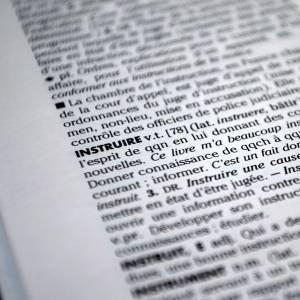 こたつから半身出てたので辞書を添えてみた