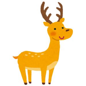 GWの奈良公園、鹿せんべいが飽和状態でお供物みたいになってるwww