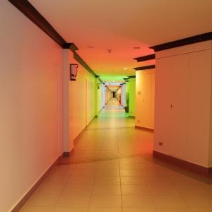 学校の廊下に超でっかい「アレ」があったwwwww