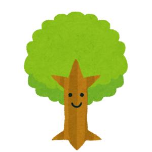 この木、天然の秘密基地みたいでテンション上がるwwww