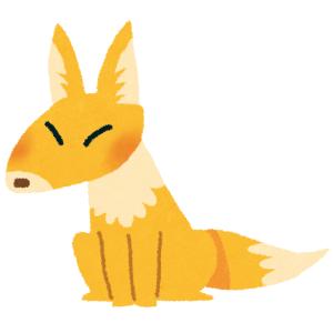こちらが「狐ミケ」の様子になります。
