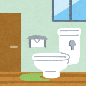 実家に帰省したらトイレの内装がえらいことになってたww