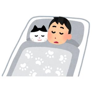 衝撃……とんでもない場所で寝る猫が発見されるwww
