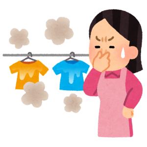 ニャ政婦「困ったわね…洗濯物の乾きが悪いわどうしましょう」