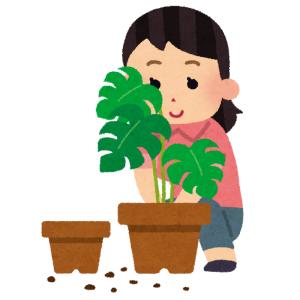 スーパーカップの新作が完全に「植木鉢」だと話題にwww