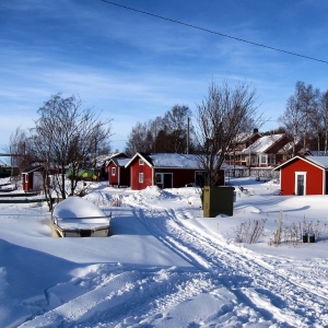 フィンランドにいる父から送られてきた写真が美麗すぎる…😊