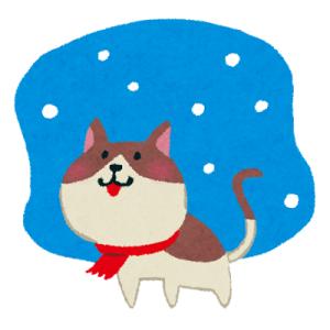 冬の猫島…一番暖かいのは観光客の膝の上😻