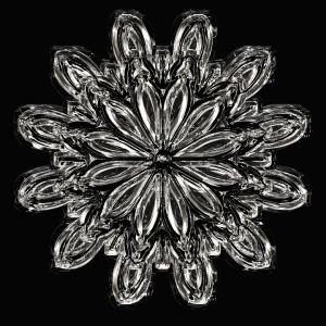 ここまで「結晶の形」がわかる雪が降るんだな……😳