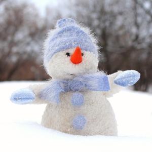 雪だるまかと思ったらうちの犬だった😂