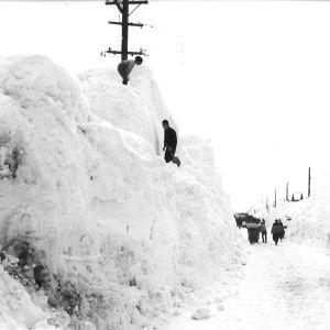 """山形県、豪雪でついに""""アレ""""に手が届くwwwwww"""