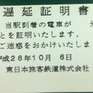 東京メトロの遅延理由が下らなすぎて逆に気になるwww