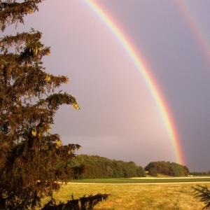 「使徒だ」「ラピュタだ」 上空に現れた球体型の虹にワクワクが止まらないw