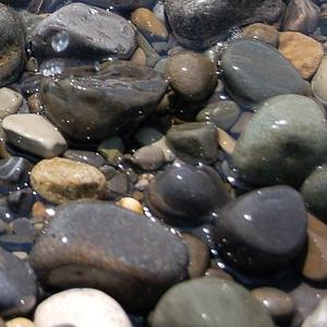 石がいつも転がってると思ったら…お前かあぁぁぁ!
