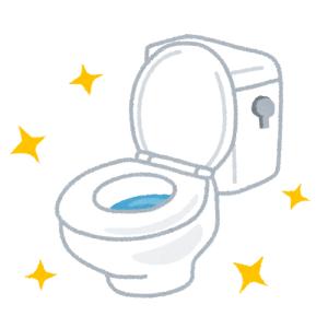 こんなにも使うのに緊張するトイレは始めてだ……