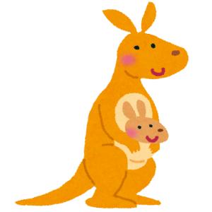 「子供トラウマになるわ!」海外製の『カンガルー親子のぬいぐるみ』が酷すぎるww