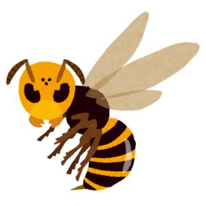 スズメバチに遭遇した母(元バレーボール部)の行動がヤバすぎるww