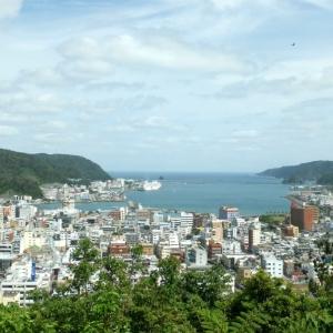 奄美大島のGoogleマップ見てたら…何なんだコレは😱
