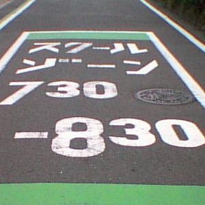 なぜここで止めた…中途半端すぎる「道路標示」が話題にww