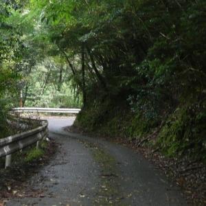 「実在したのか…」鹿児島の山中にある看板がヤバすぎると話題に