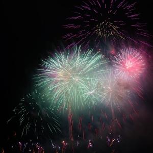 花火が打ち上がるような音が聞こえるから、近所で花火大会でもやってるのかな?と思ったら…😽