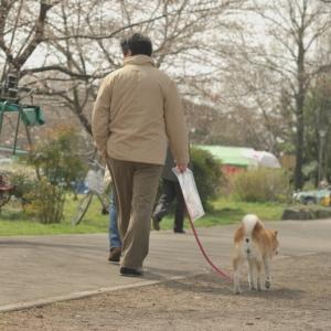 散歩中「もう帰ろうか」と声をかけた時のワンコの表情www