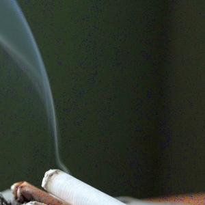 因果応報! 穴にタバコをポイ捨てした男に悲劇が😱
