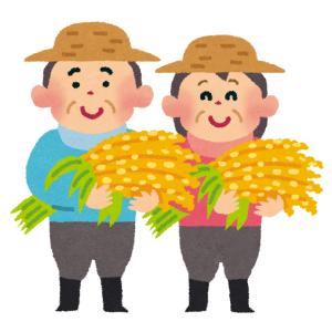 かつてこんなにも「米の収穫」を美しく撮らえた写真があっただろうか…😳