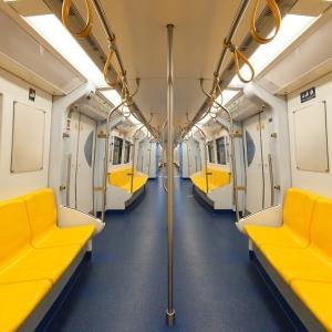「走行中の電車内にありえない生き物がいた…」駅員もリアクションに困る光景がこちら😨
