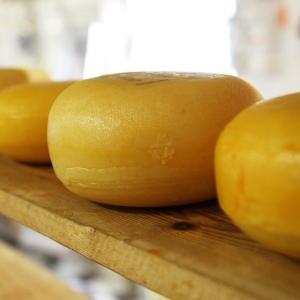 「これが本当のブルーチーズか…」あまりに青すぎてまったく食欲が沸かないチーズが話題にw