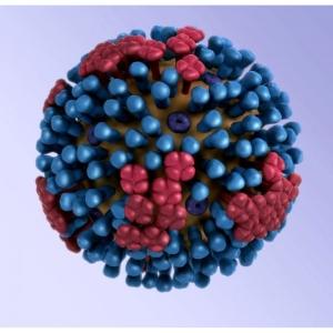 本当に? どこにでも売ってる「あの飲み物」がインフルエンザウイルスを99.9%無力化するらしい…?
