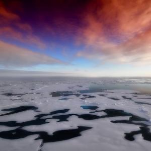 """南極で初めて(?)起きてしまった研究者同士の傷害事件。その""""原因""""にツイ民驚愕…。"""