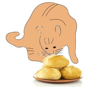 パンを盗んだ猫の「もう絶対離さニャい!」顔が必死カワイイwww