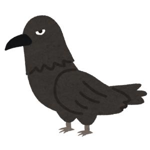 物凄いタチの悪そうな鳥に目をつけられた…😨