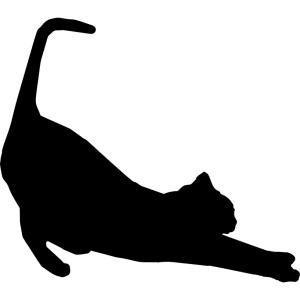 うちの猫以上に「くつろぎ方がダンディな猫」など存在するのだろうか…😼