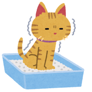 """「商品化希望!」和室に合う""""猫トイレ""""がないので自作したというTwitterユーザーが話題に"""