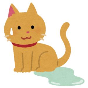 """腕の上に乗ってた猫が""""幸せすぎる痕跡""""を残していった…😽"""