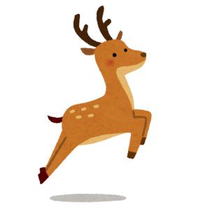 """もはや奈良名物となった""""鹿が公道を爆走する光景""""だけど…今日は何かが違う😳"""