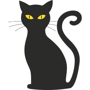 家で黒猫が姿を消したので探し回ってたら…まさかの場所におった😂