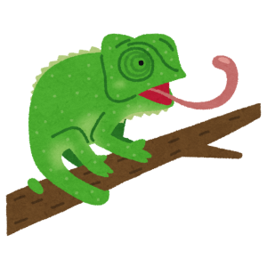 大好きな「あの虫」をなかなか舌でキャッチできないカメレオンが愛おしすぎるwww