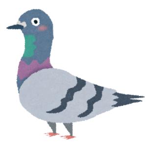 「うちのマンションの鳩対策がすごい…」まさかのアイデアにツイ民衝撃