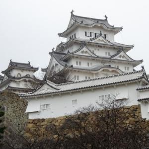 「観光地のお手本みたいな地形だな…」姫路駅から見た姫路城の一目瞭然っぷりにツイ民驚嘆